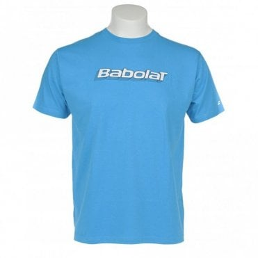 Mens Training Basic T-Shirt Blue